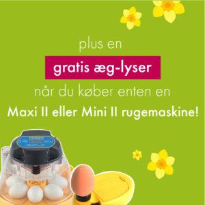 plus en gratis æg-lyser