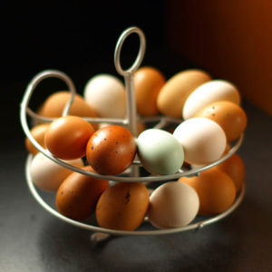 Æggekarrusellen