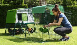 Eglu Cube-hønsehuset er hevet over bakken