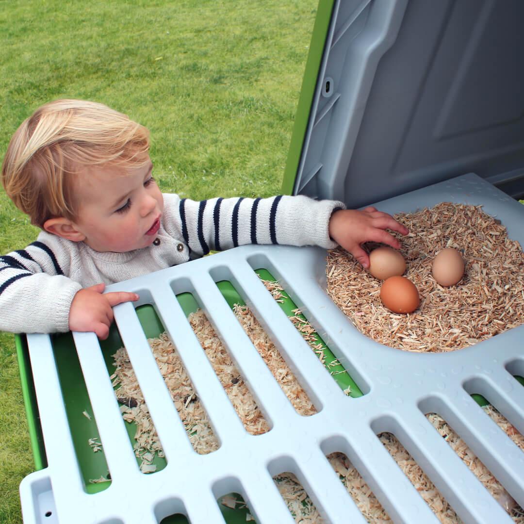 Kogte æg holdbarhed udenfor køleskab