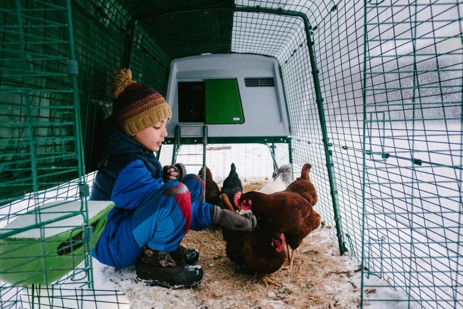 En dreng sidder i en eglu hønsegård i sneen