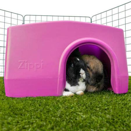 to kaniner gemmer sig i et lilla shelter i en gård